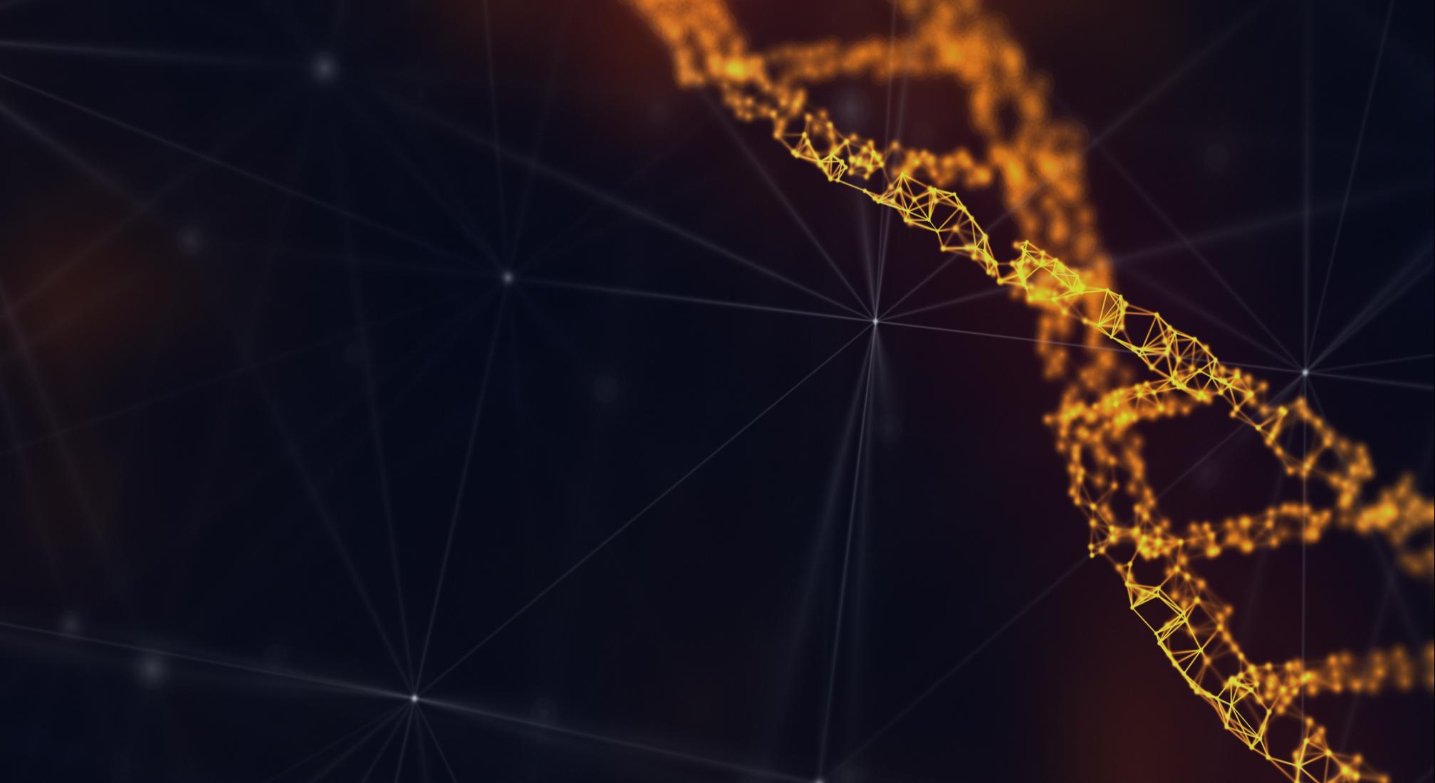 connectivity-1-1